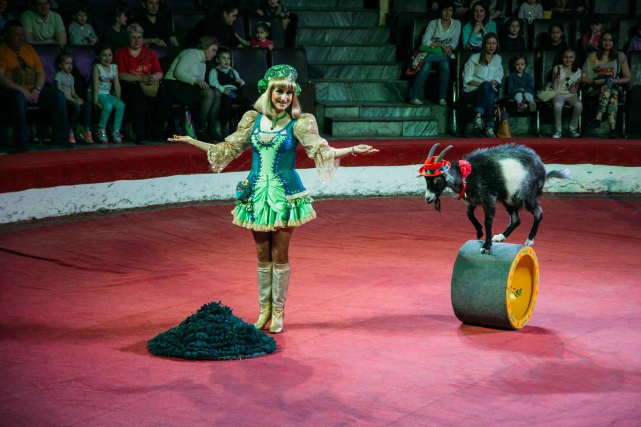 Любовь Артемова. Фото © Уфимский государственный цирк