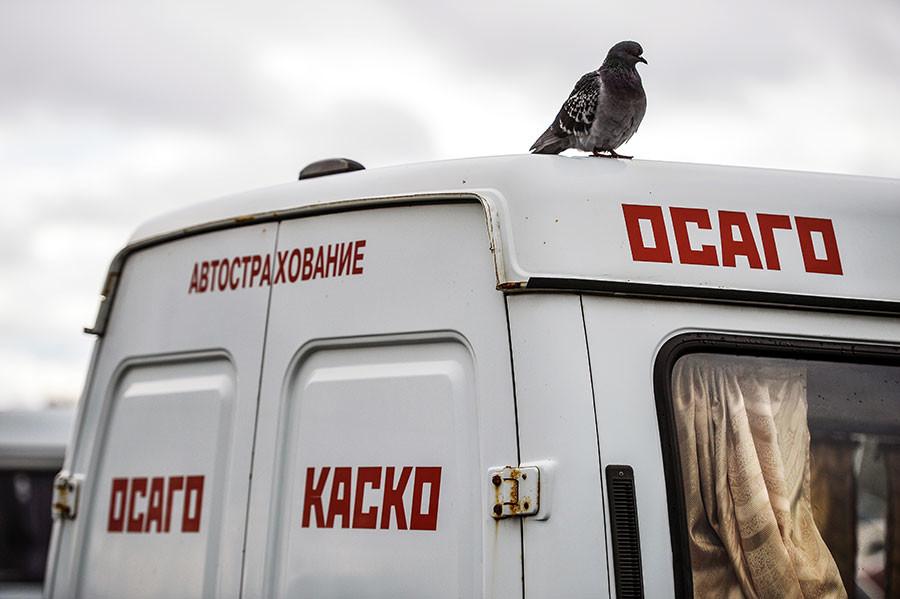 Фото: © РИА Новости / Максим Богодвид