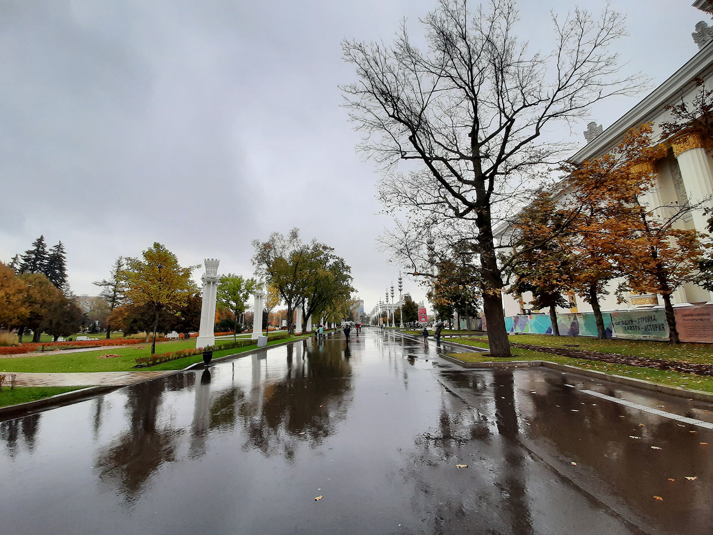 Ширик. Фото © Роман Кильдюшкин