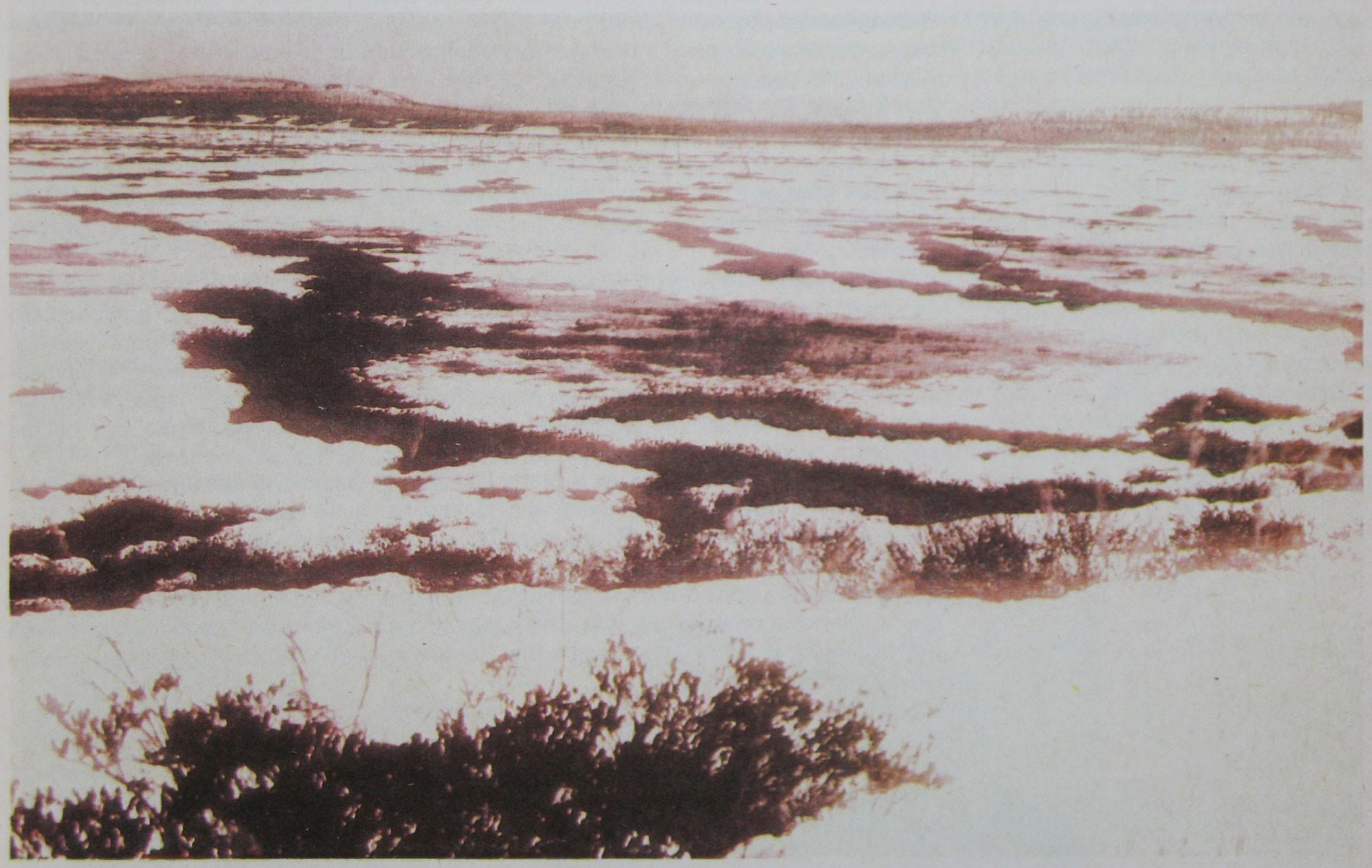 """Топи Тунгуски, в районе которых упал метеорит. Фотография из журнала """"Вокруг света"""", 1931 год. Фото © wikipedia"""