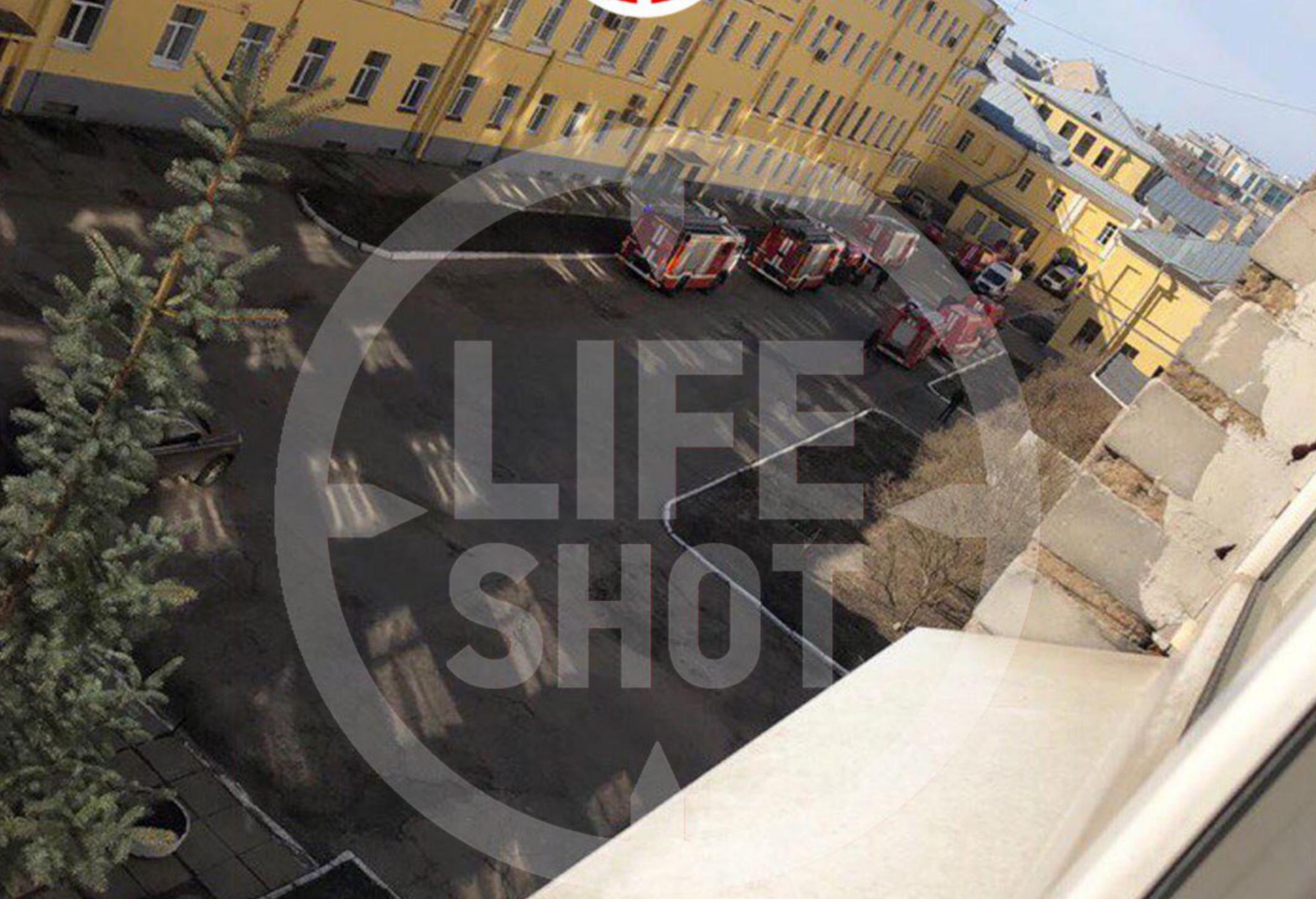 Фото: © LIFE SHOT
