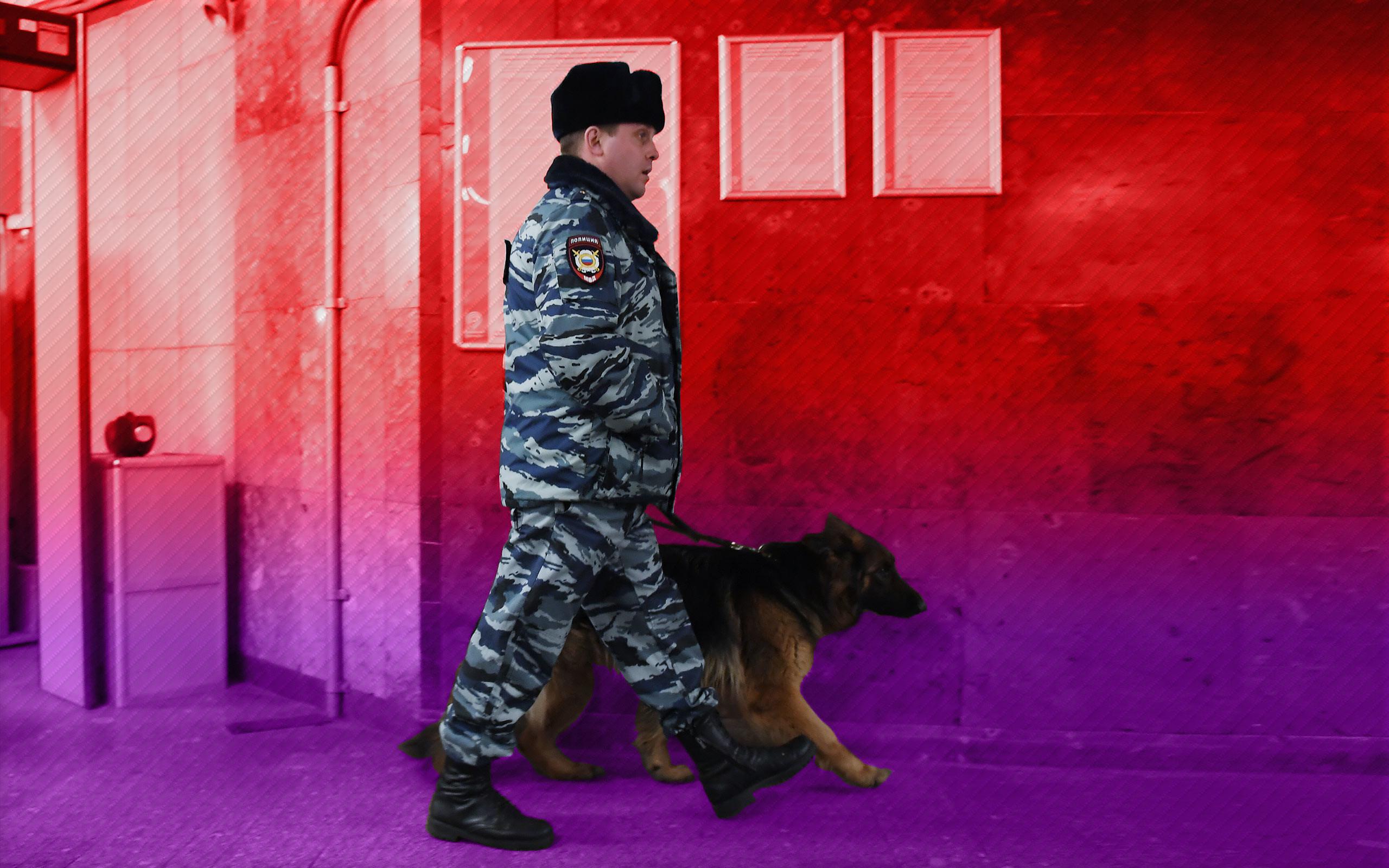 Коллаж: © L!FE Фото: © РИА Новости / Рамиль Ситдиков