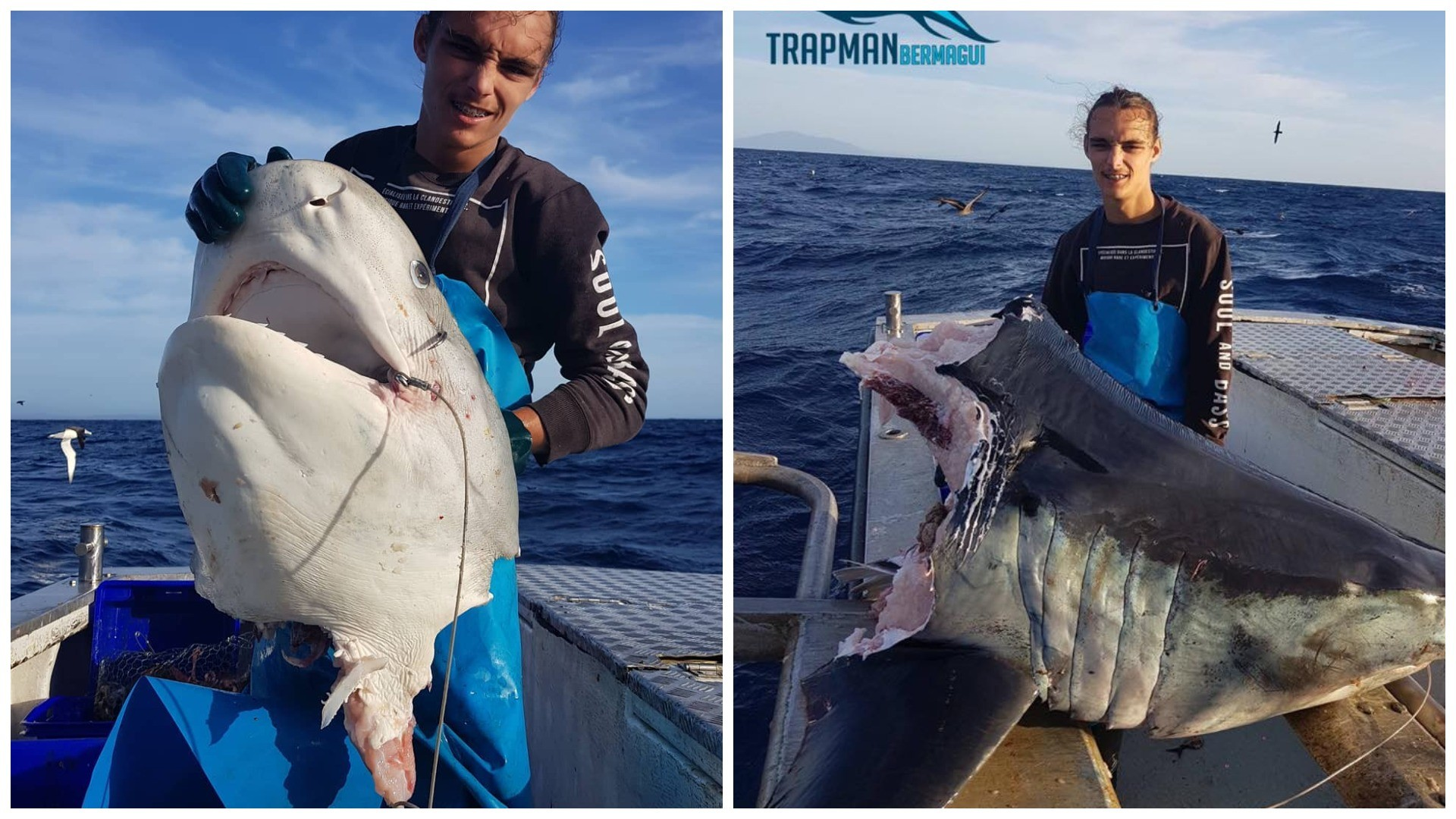 Фото: © instagram.com / trapman_bermagui
