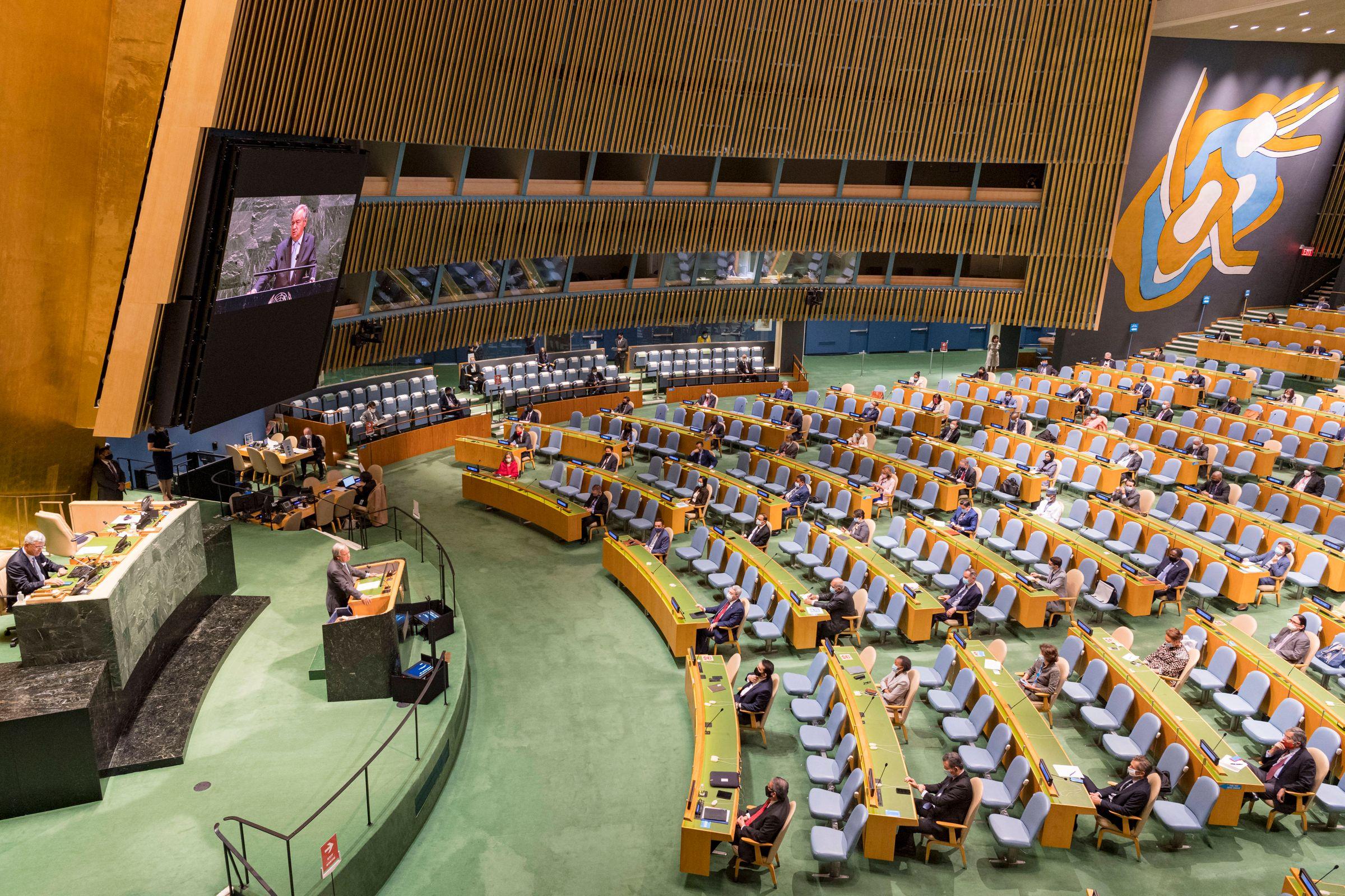 <p>Фото © ТАСС / UN Photo / Handout via Xinhua</p>