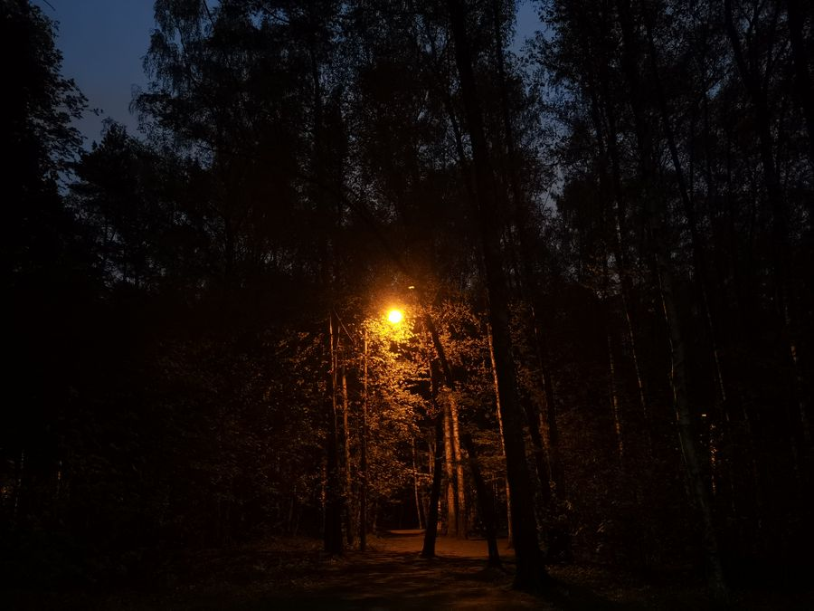 Снимки при слабом освещении. Фото ©LIFE / Роман Кильдюшкин