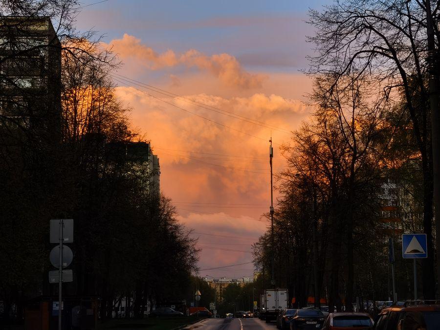 Примеры снимков с приближением. Фото ©LIFE / Роман Кильдюшкин