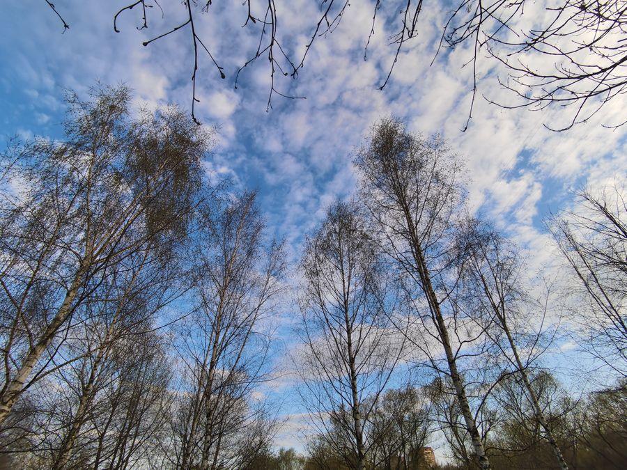 Примеры фотографий с широкоугольной камеры. Фото ©LIFE / Роман Кильдюшкин