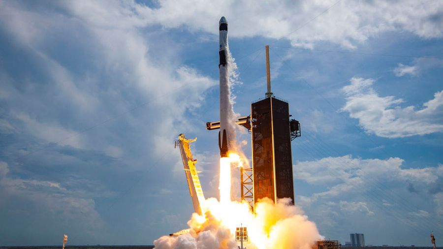 <p>Фото © SpaceX via Getty Images</p>