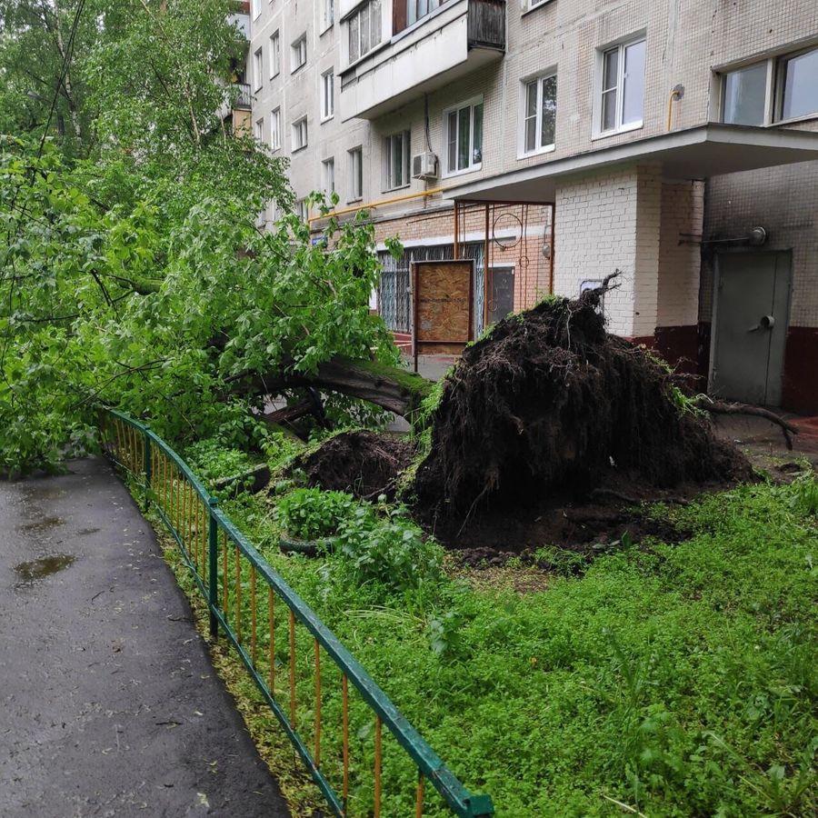 Фото © VK / Москва с огоньком | Новости Москвы