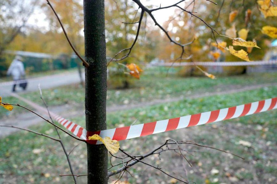 <p>Место убийства Шишкиной. Фото © Джапаридзе Михаил / ТАСС</p>