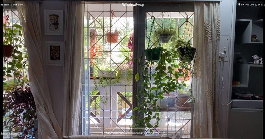 Фото © Window Swap