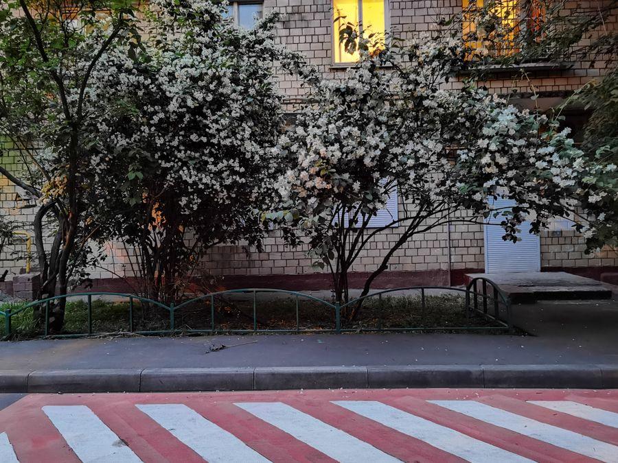 "1x. Режим ""Ночь"". Фото ©LIFE / Татьяна Руденко"