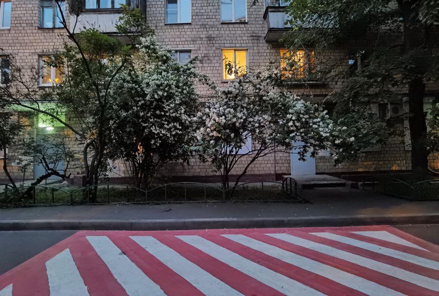 Кинообъектив. Обычный режим. Фото ©LIFE / Татьяна Руденко