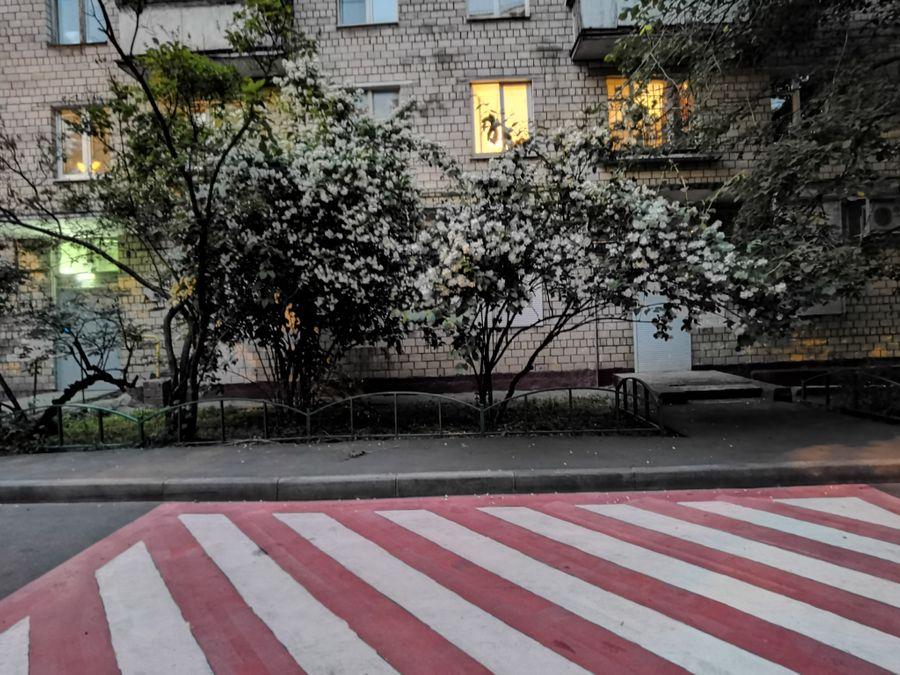 "Кинообъектив. Режим ""Ночь"". Фото ©LIFE / Татьяна Руденко"