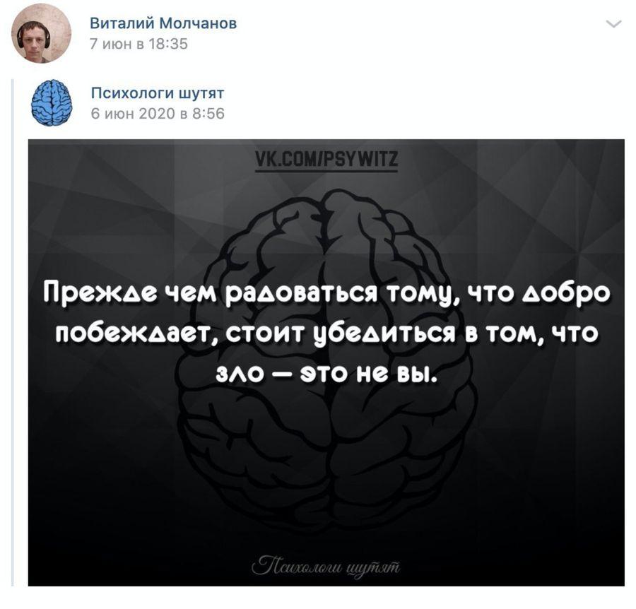 "Скриншот © ""ВКонтакте"" / Виталий Молчанов"