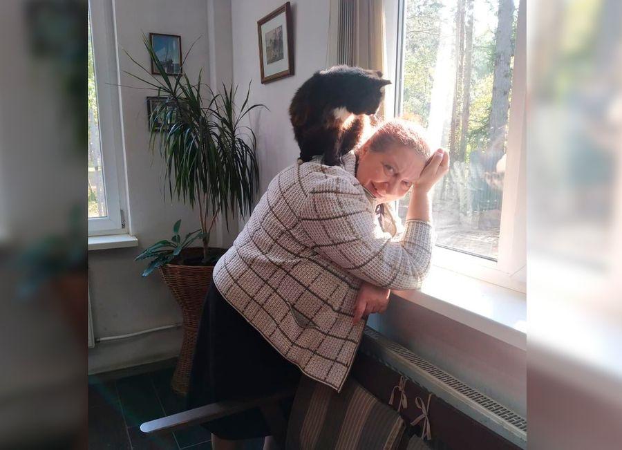 Фото © МО пос. Комарово