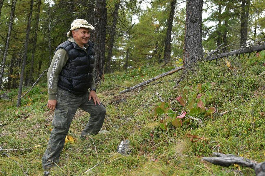 <p>Министр обороны РФ Сергей Шойгу. Фото © ТАСС / Алексей Дружинин</p>