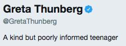 Скриншот © Twitter / Greta Thunberg