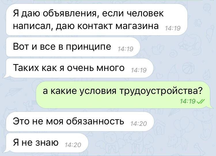 Скриншот © LIFE