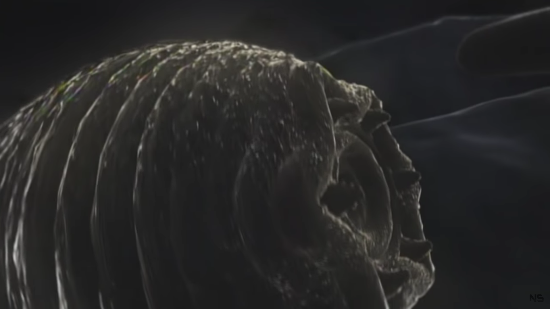 Halicephalobus mephisto (дьявольский червь). Скриншот видео © Naked Science