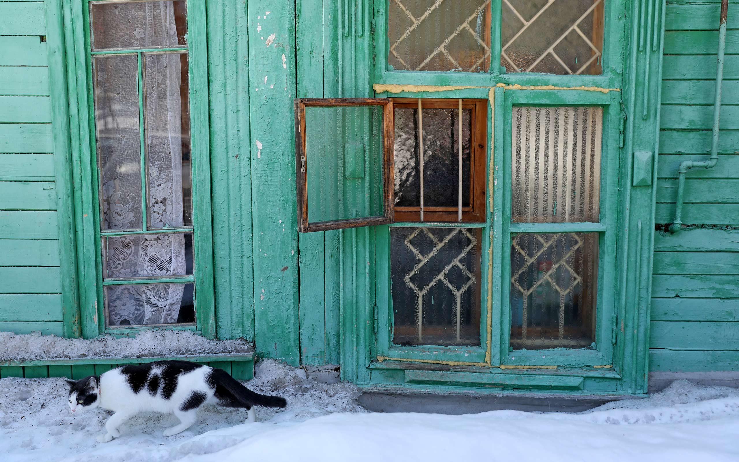 Фото: © L!FE/Калантаров Эмин