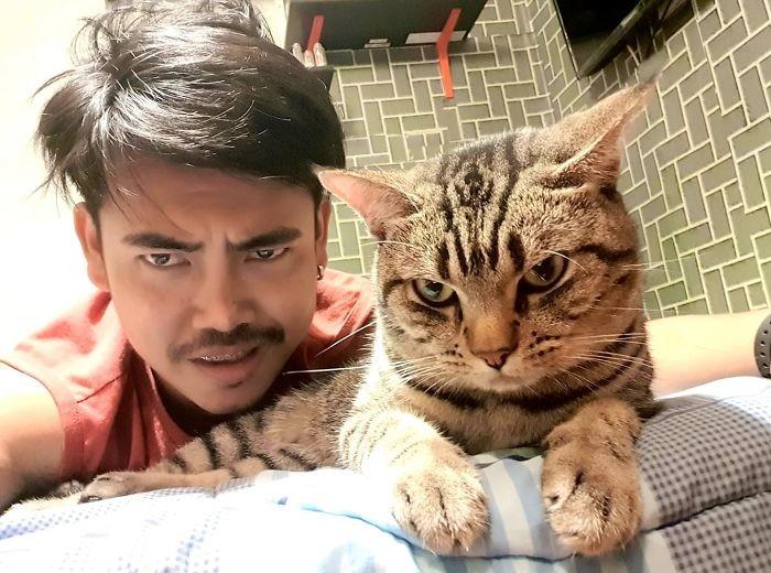 Фото: facebook/ชมรมคนรักแมว