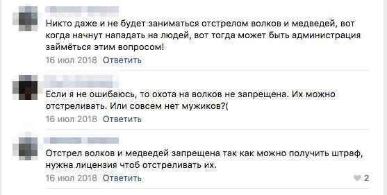 Тот самый пророческий комментарий. Фото © VK / УДОРА ONLINE