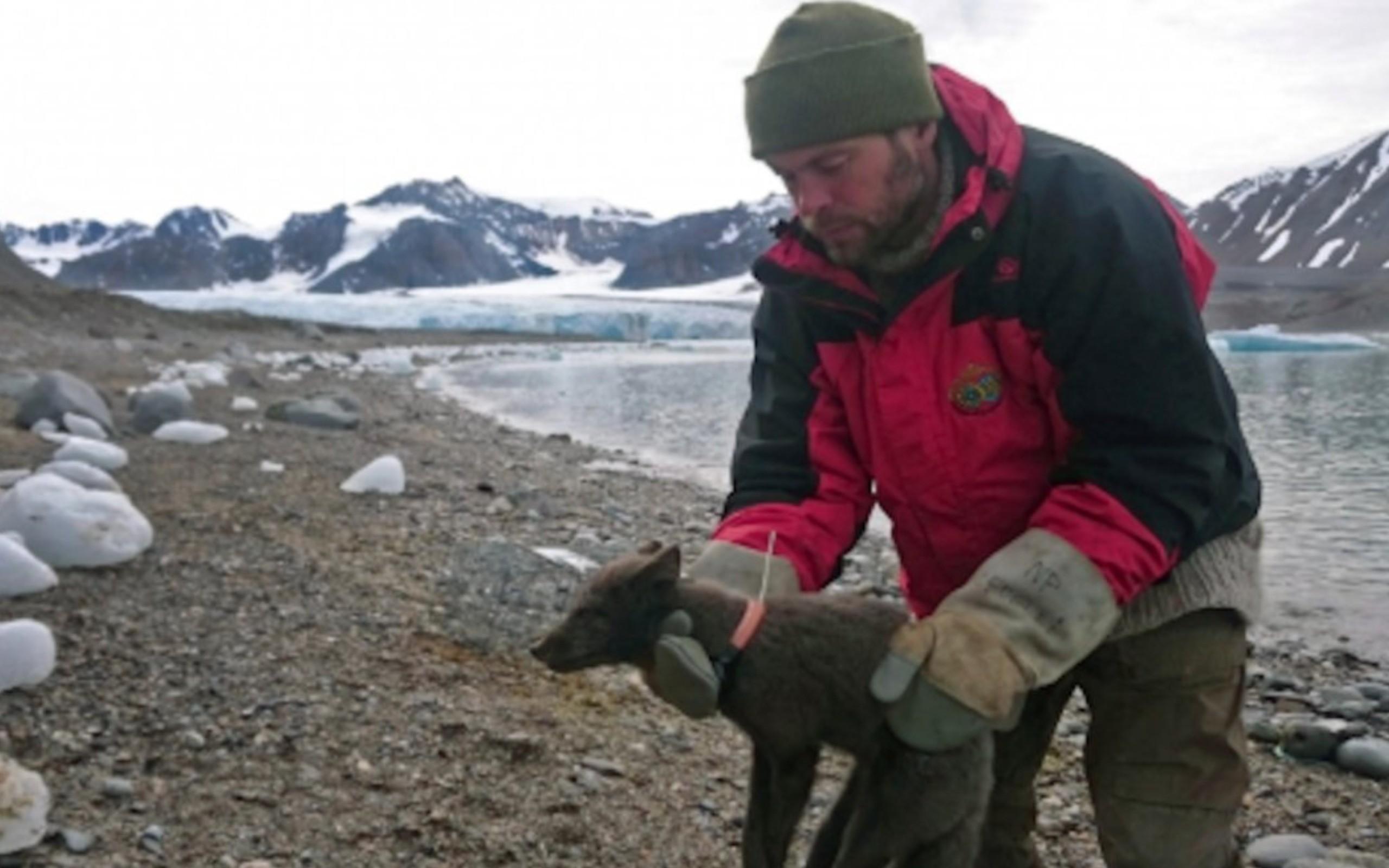 Фото © Norwegian Polar Institute
