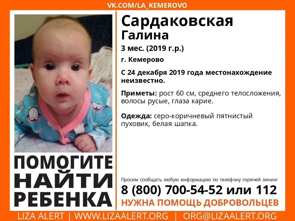"""Фото © VK / """"Поисковый отряд """"Лиза алерт"""" Кузбасс"""""""