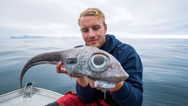 Фото © Facebook / Nordic Sea Angling
