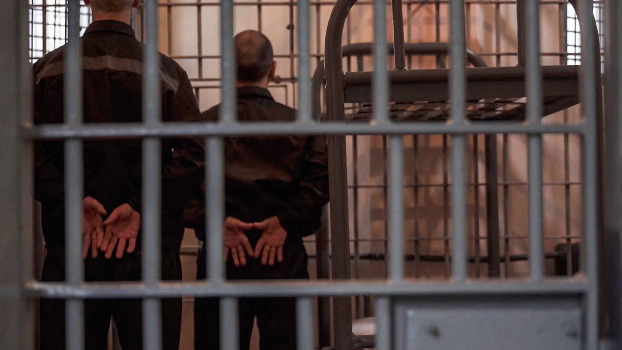 фото осужденных пожизненно рукава кофточки