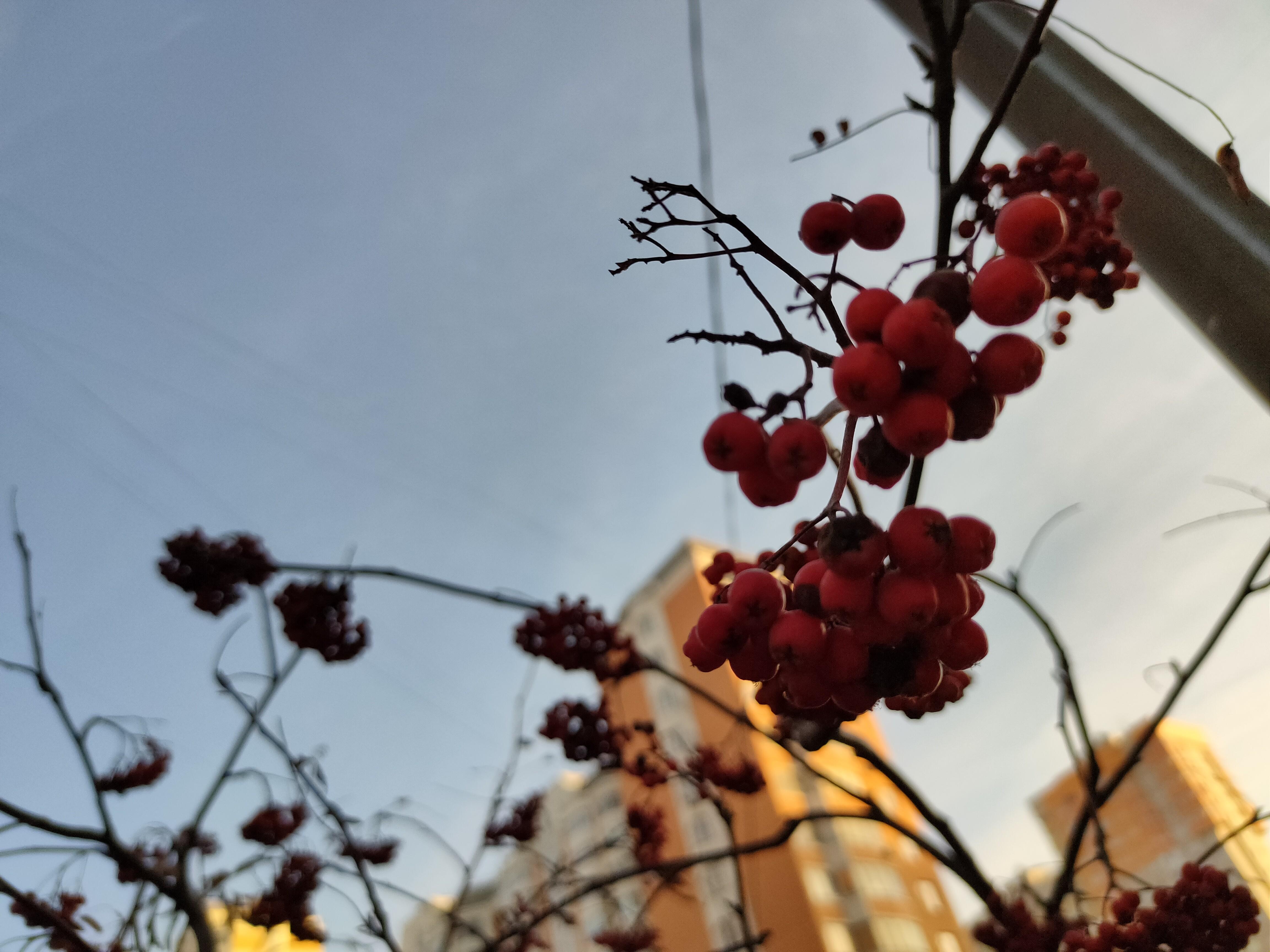 <p>Фото © LIFE/Роман Кильдюшкин&nbsp;</p>