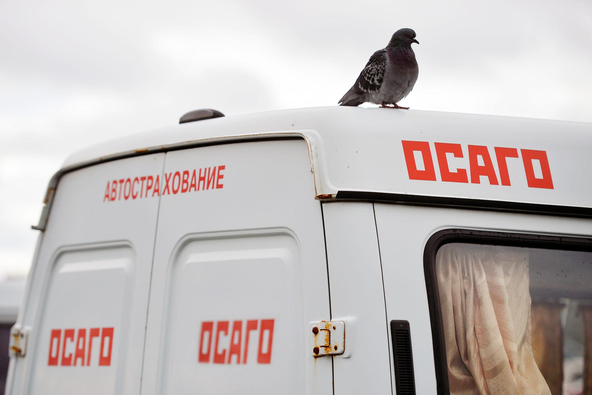 <p>Фото: &copy; РИА Новости/<span>Максим Богодвид</span></p>