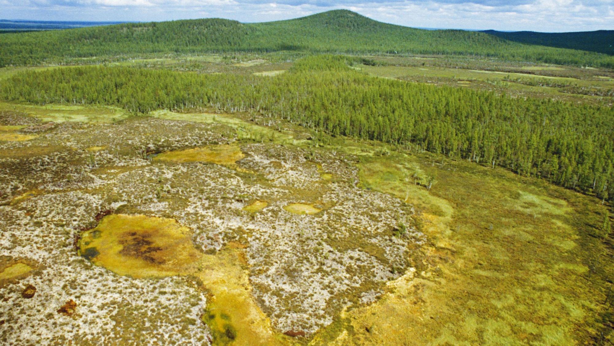 картинки метеорита тунгусский метеорит коктейльное платье