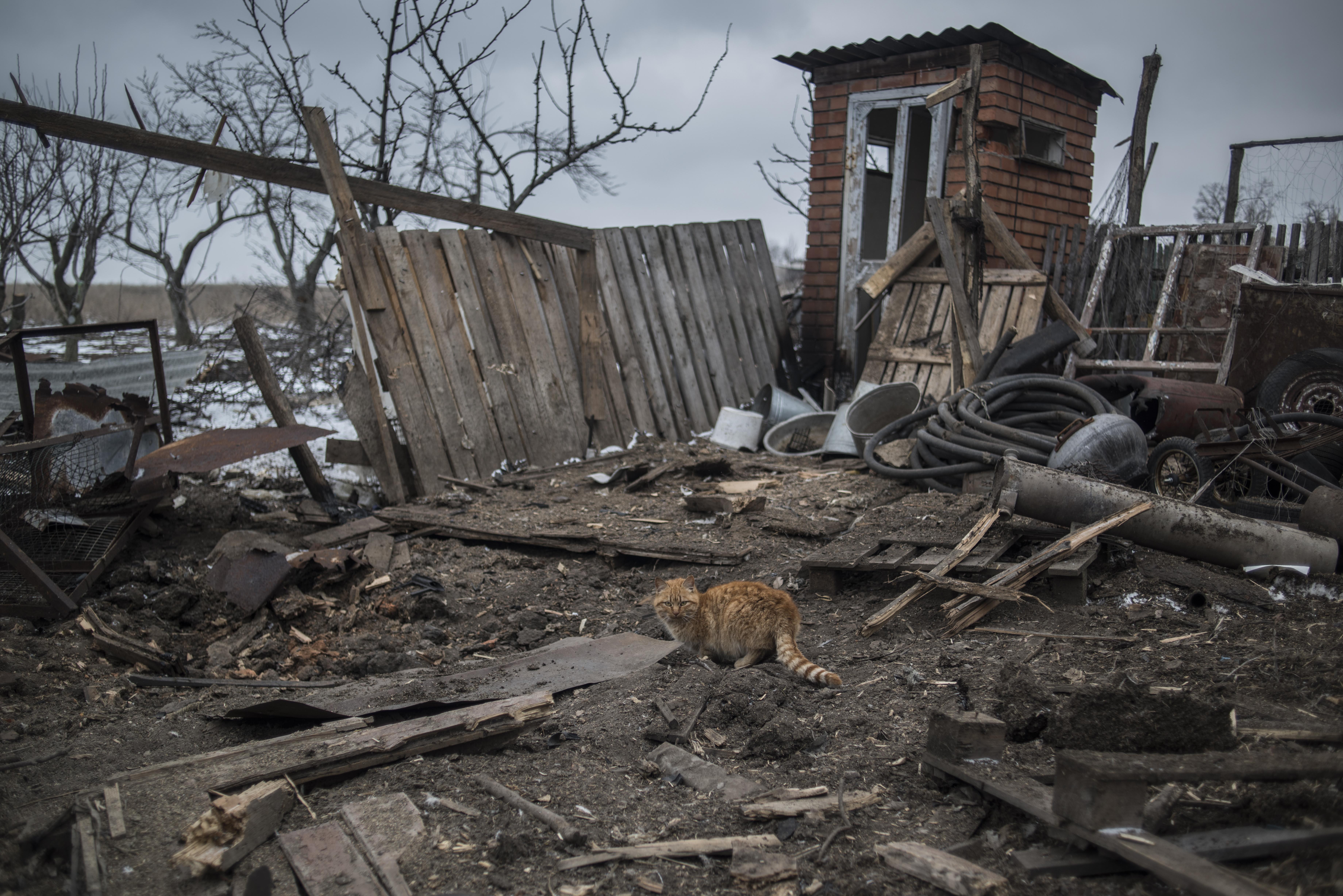 <p>Фото:<span>&copy; РИА Новости/ Валерий Мельников</span></p>