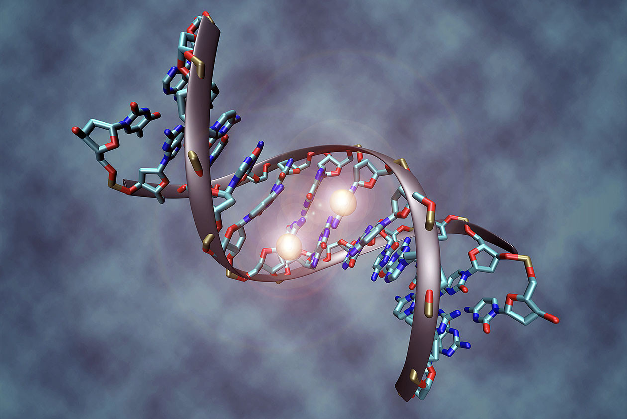 """<p>Фото: &copy;&nbsp;<a href=""""https://simple.wikipedia.org/wiki/DNA_methylation"""" target=""""_blank"""">wikipedia</a></p>"""