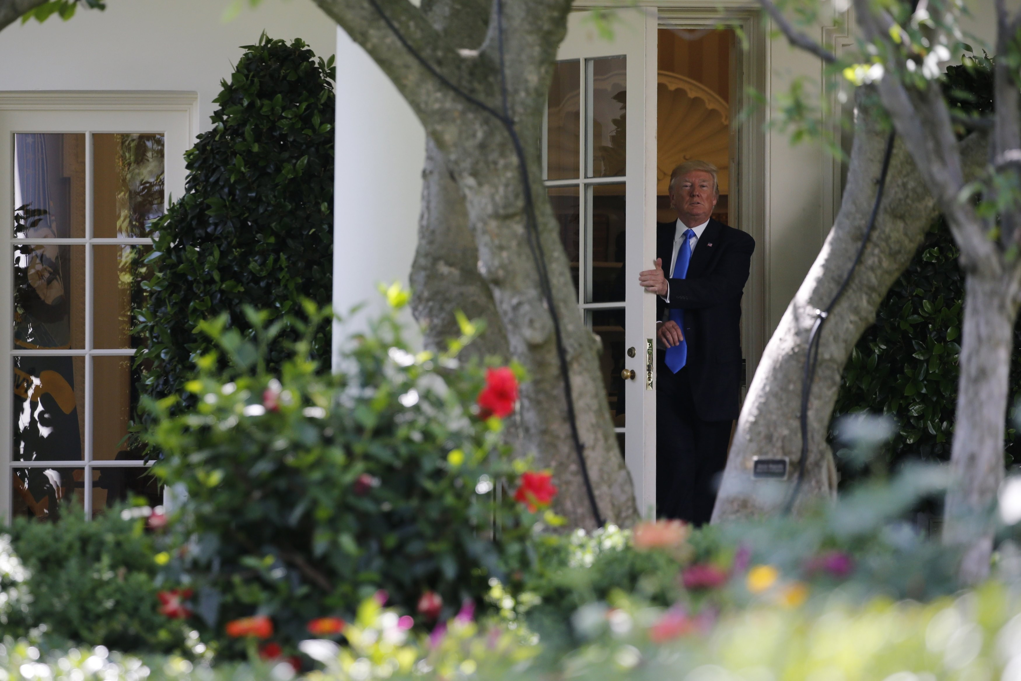 <p>Дональд Трамп в Белом доме. Фото: &copy;&nbsp;<span>REUTERS/Jonathan Ernst</span></p>