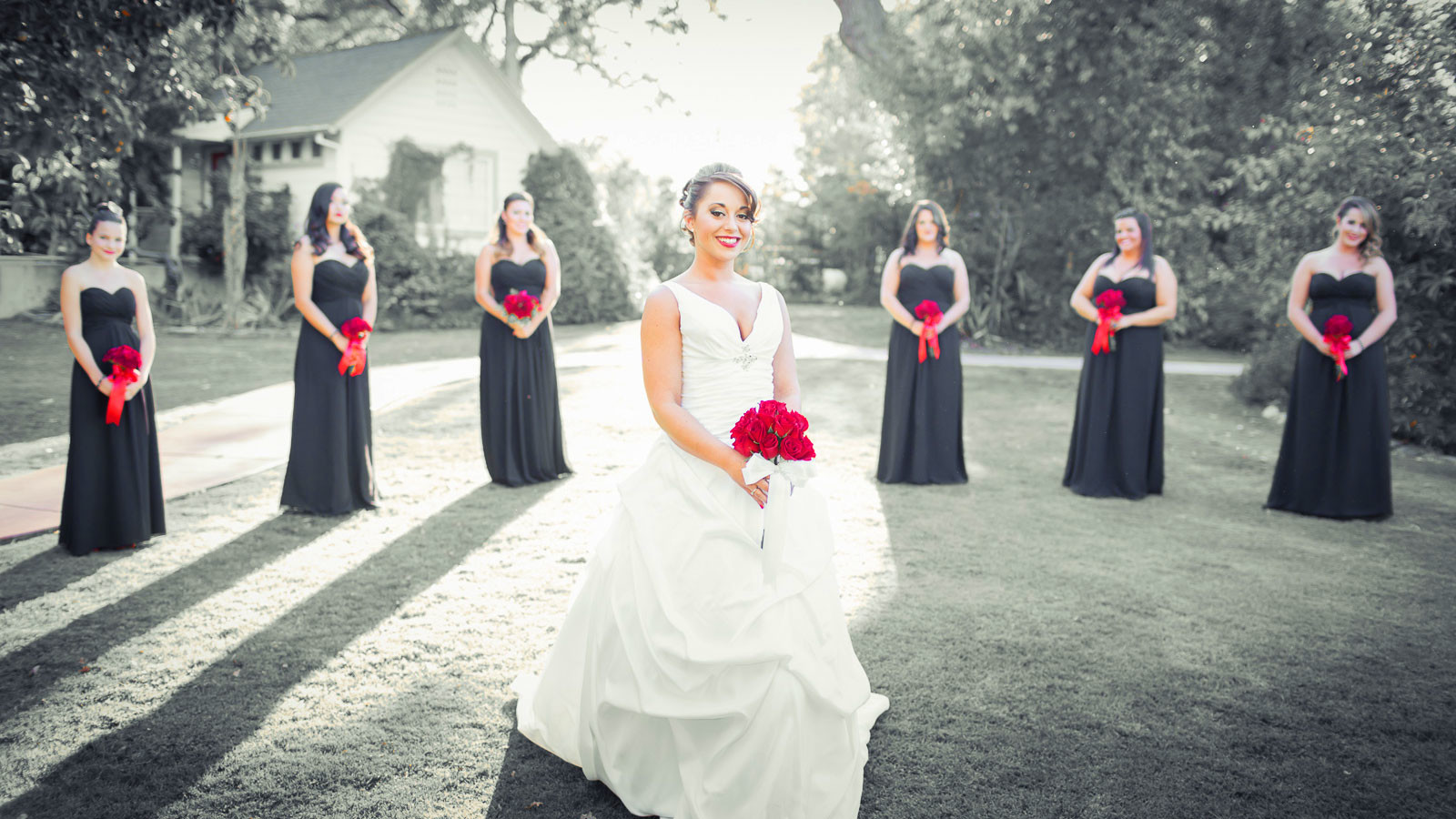 Программа москва инструкция по применению выпуск рассказ о свадьбах