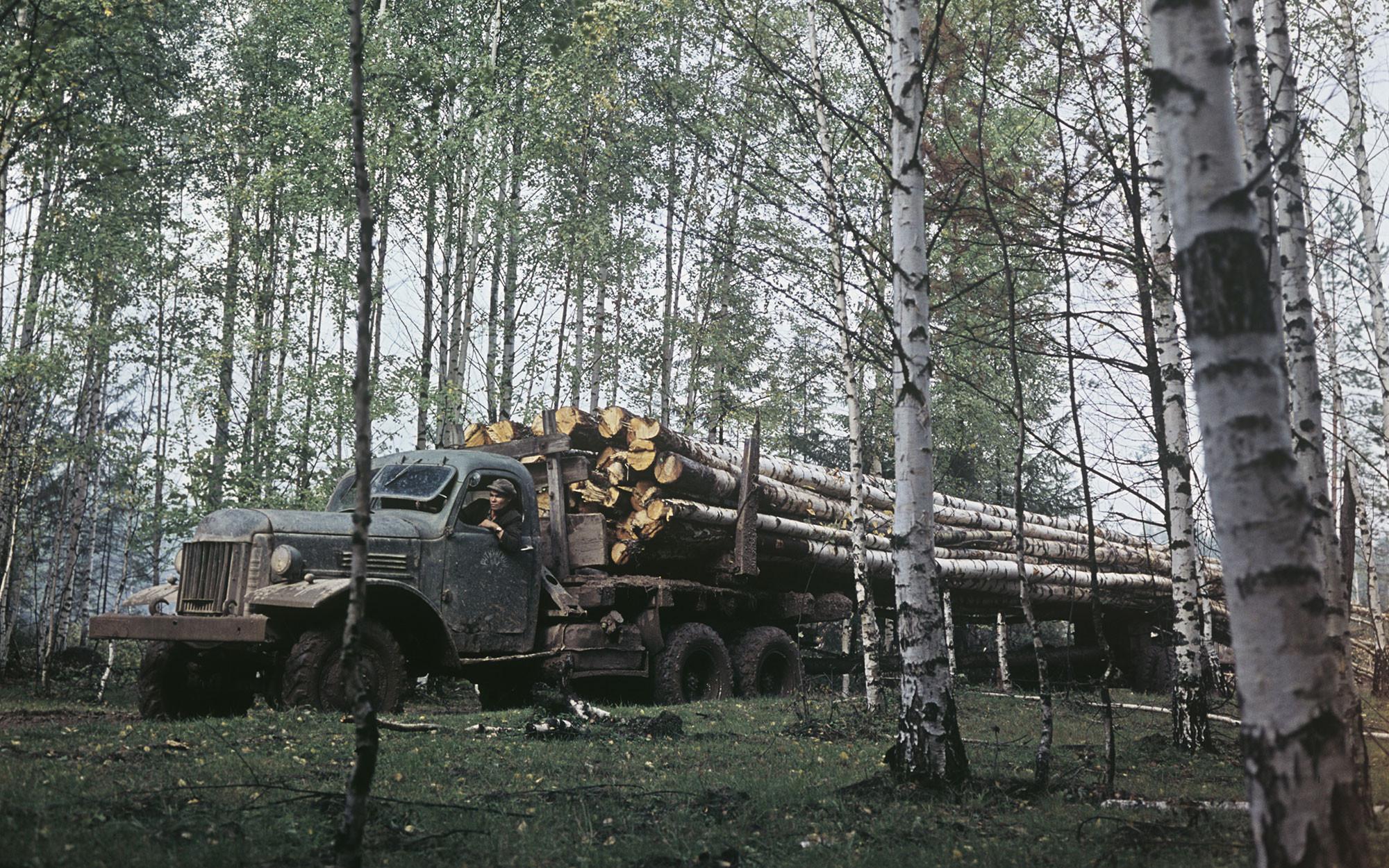 <p>Фото: &copy; РИА Новости /&nbsp;Владимир Акимов</p>