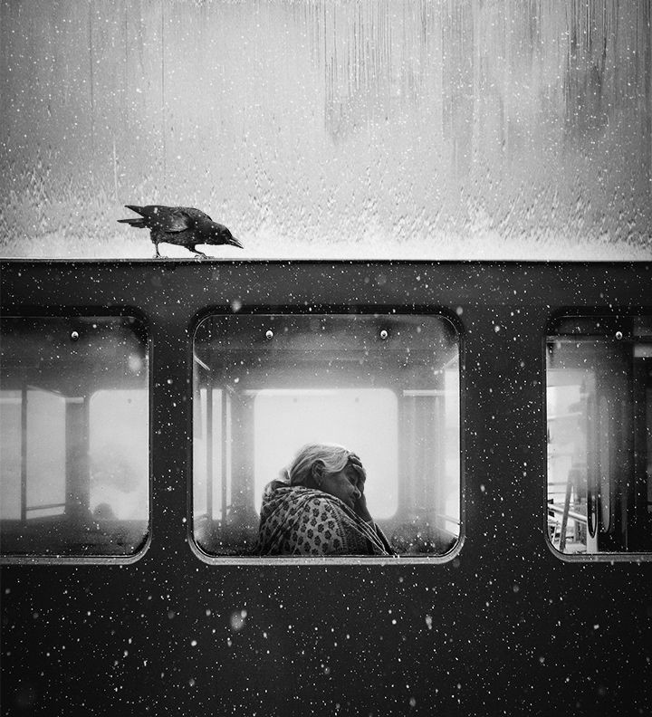 "Фото © Jack Savage/""Crow of Lviv"""