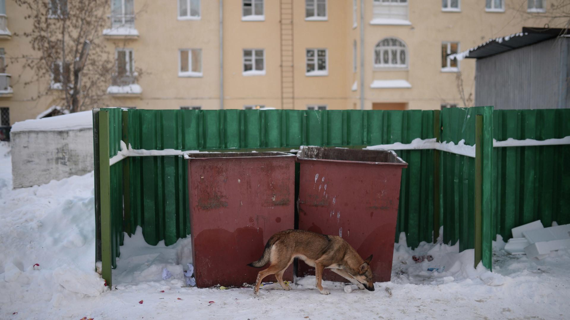 Фото: © РИА Новости/Александр Кряжев