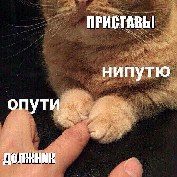 Фото: © Соцсети