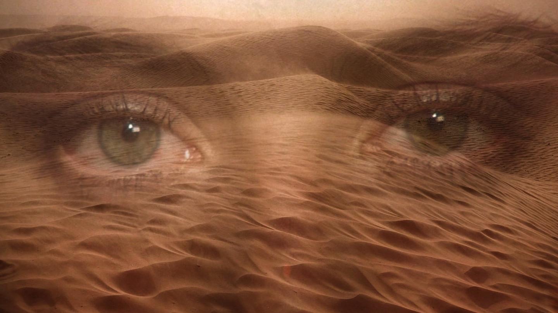 "<p>Коллаж &copy; L!FE. Кадр фильма ""Дюна""/ &copy; Кинопоиск</p> <div> <div> <div></div> </div> </div>"