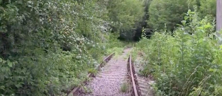 Железнодорожные пути, рядом с которыми было найдено тело