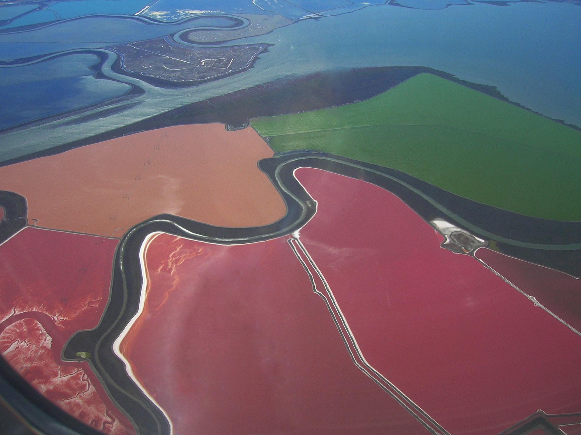 Инопланетный цвет этих прудов у Сан-Франциско дают археи-солефилы; подобные организмы размножаются при содержании соли в воде до 37 процентов. Фото: © wikipedia.org