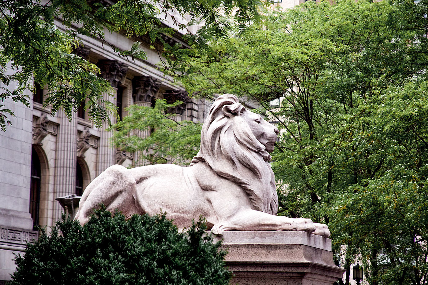 """<p>Фото: &copy; <a href=""""https://commons.wikimedia.org/wiki/File:Lion_sculpture,_New_York_Public_Library,_New_York,_NY_07422u_original.jpg"""" target=""""_blank"""">Википедия</a></p>"""