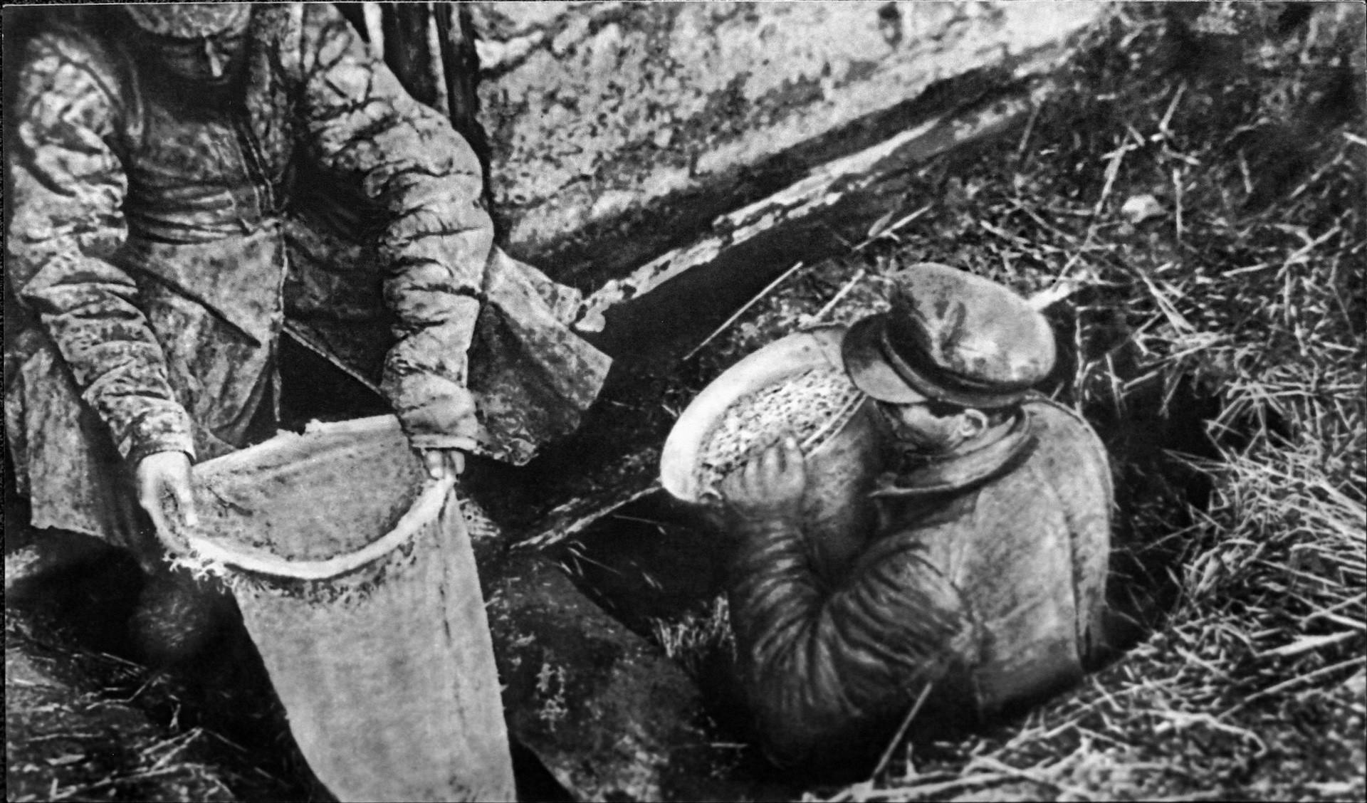 Работники ОГПУ извлекают из ямы спрятанное зерно, 1932 год. Фото: © wikipedia.org/Государственный музей политической истории России