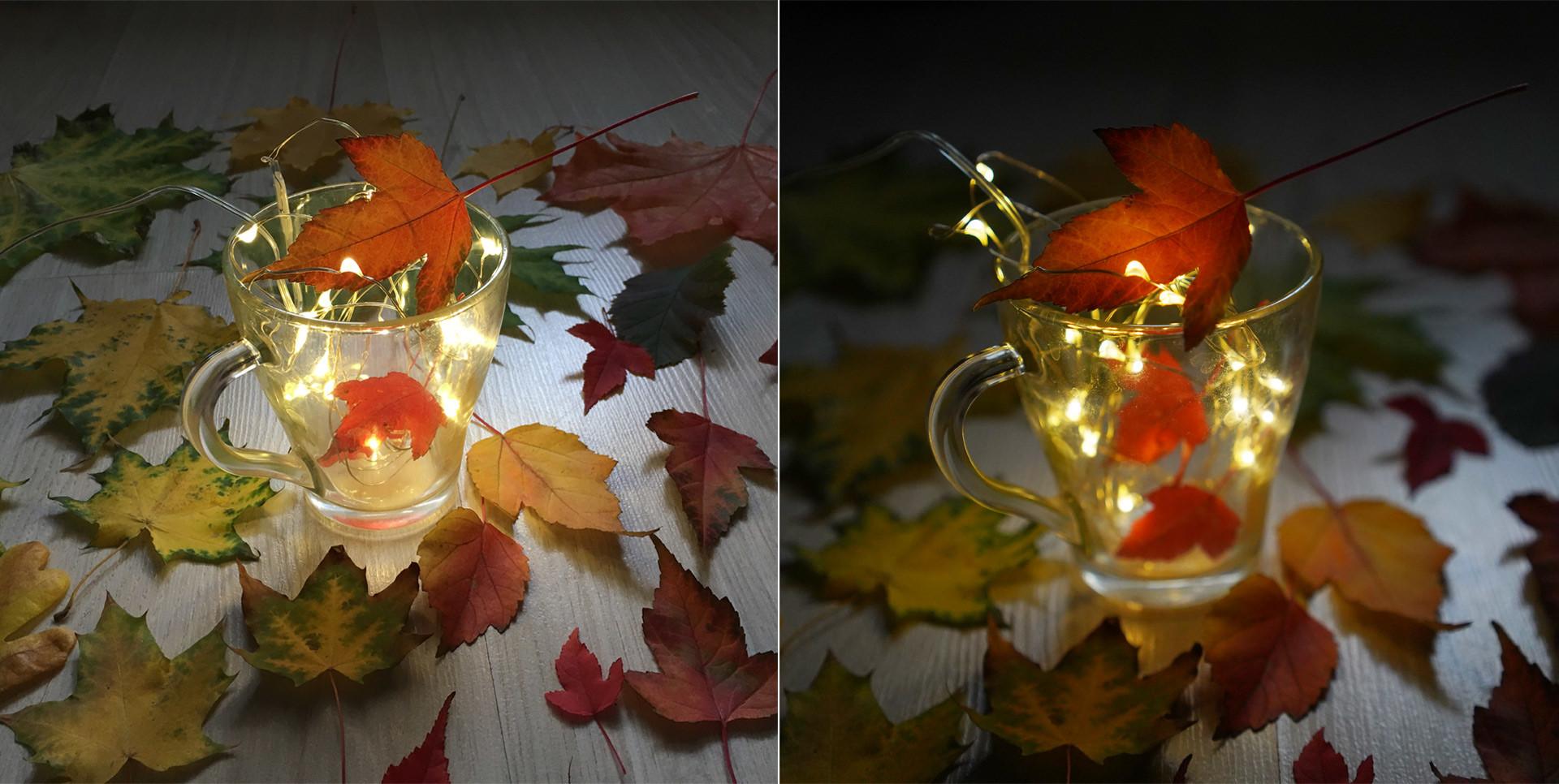 Слева фотография, созданная на iPhone 6s, справа — на Sony A7 Mark III. Фото: © Tатьяна Руденко