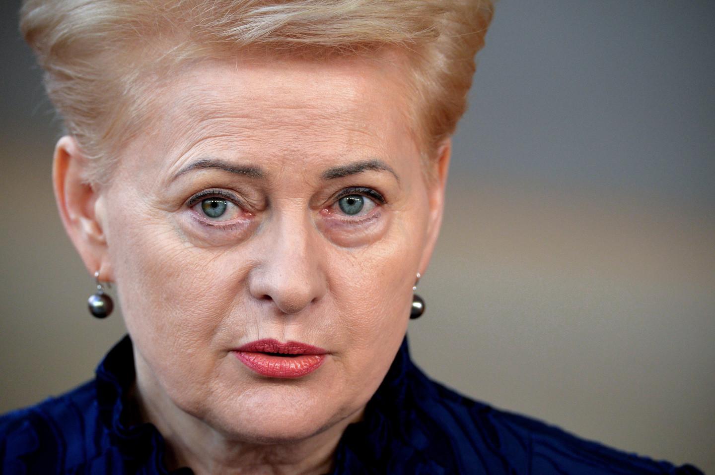 <p><span>Президент Литвы Даля Грибаускайте.&nbsp;</span><span>Фото &copy; РИА Новости/Алексей Витвицкий</span></p>