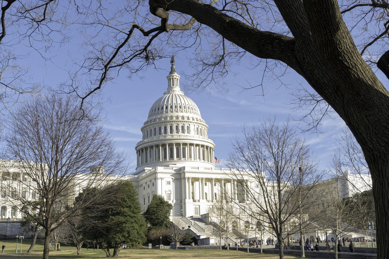 """<p><span>Фото: &copy; Flickr/</span><a href=""""https://www.flickr.com/photos/144497865@N03/45645047395/"""">Amy Sparwasser</a></p>"""